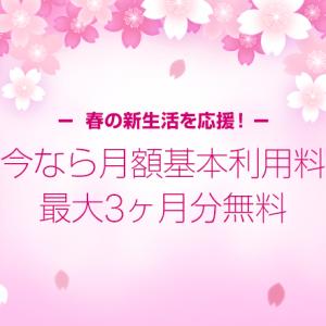 LINEモバイルの音声通話プラン料金が最大3ヶ月0円![2017/4/1更新]