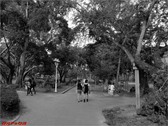 台南公園でモノクロ撮影