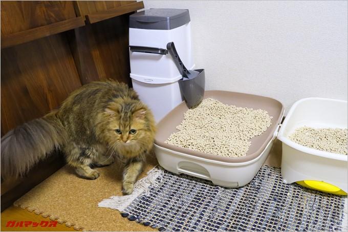 猫トイレの横にリターロッカーを置いてみた。