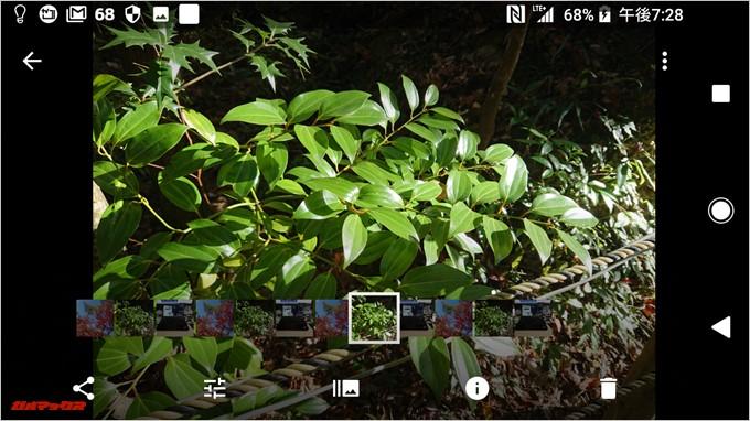 Xperia XZ1 Compact(G8441)はGoogleフォトでバグって表示される