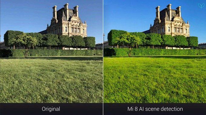 Xiaomi Mi 8のカメラで草木を認識鮮やかな緑色の芝生が映えます