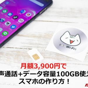 モナWi-Fiの単体SIMを活用して音声通話+データ容量100GBを月額3,680円で実現