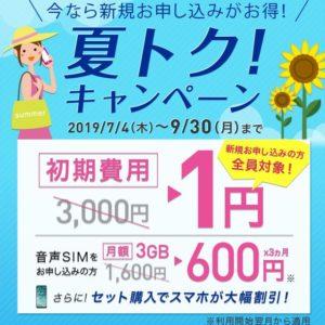 [ガルマックス限定タイアップで更にお得!]IIJmioが夏トク!キャンペーンを開始!スマホ大幅割引!