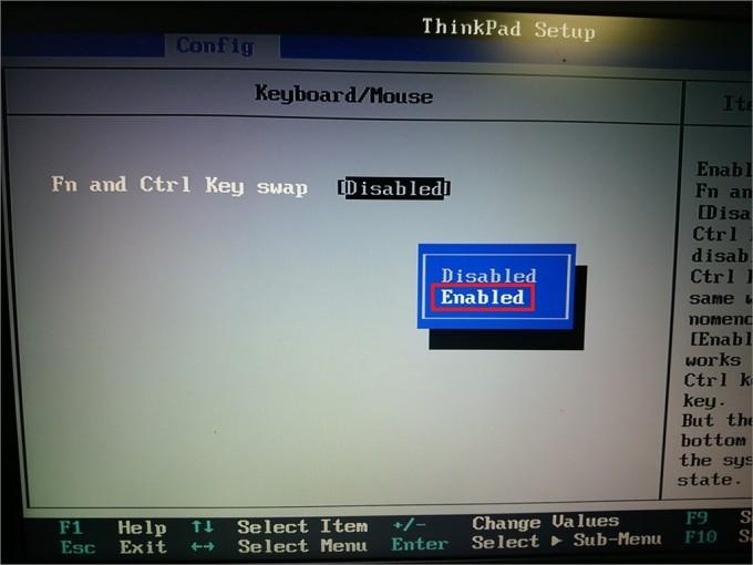 ThinkPadfnkey (5)