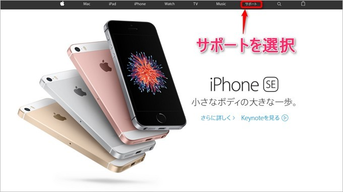 garumax-Apple-Store-CALL (1)