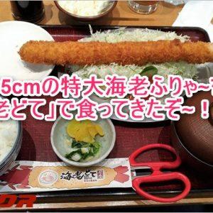名古屋駅から徒歩5分!35cmエビフライが食べれる「海老どて」の行き方!
