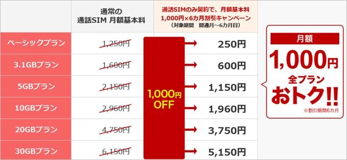 データ容量に縛られる事無く1,000円割引となる