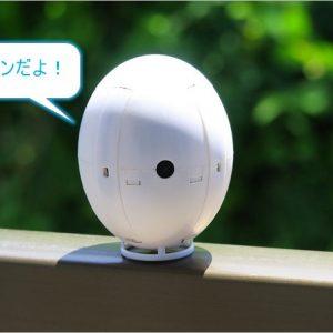 卵型のドローン「Kai Deng K130 Egg Drone」レビュー。高度維持機能が凄い